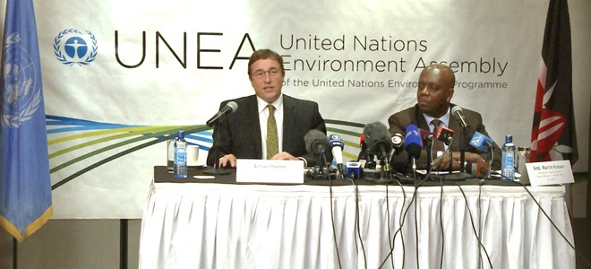 UNEA: from economic to sustainable development