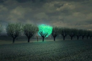 Bioluminescent-Tree