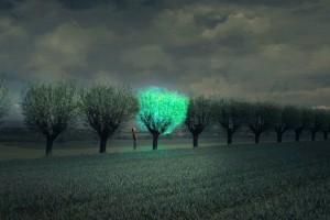 Bioluminescent-Tree