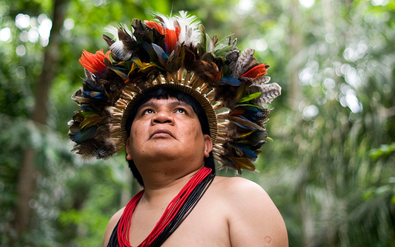 A Prudent People with a Grand Legacy: The Suruí Struggle Against Deforestation in the Amazon