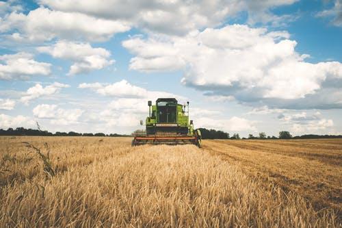 Common Agricultural…Fraud? Why the European Common Agricultural Policy needs improvement