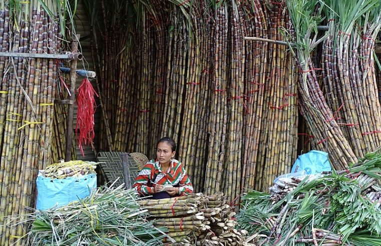 Cambodian Sugar Rush