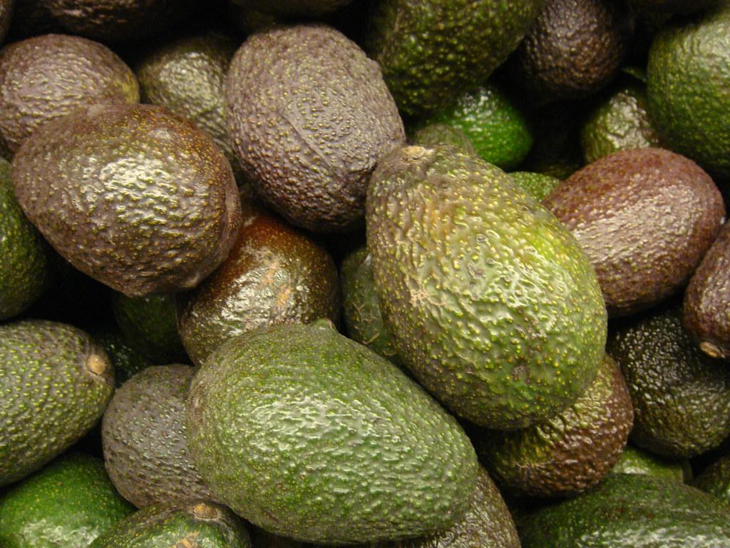 Avocado Mania: Pressing Environmental Concerns and Funding Mexican Drug Cartels