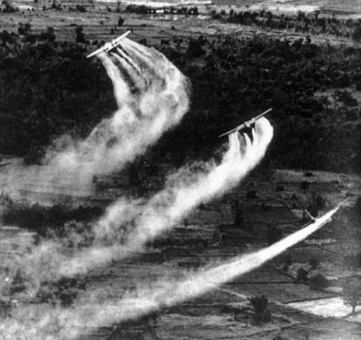Those for Whom the War Lives On – A View on The Aftermath of Agent Orange